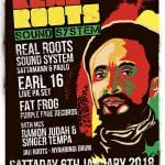 Real Roots Sound System ft Earl 16 live PA